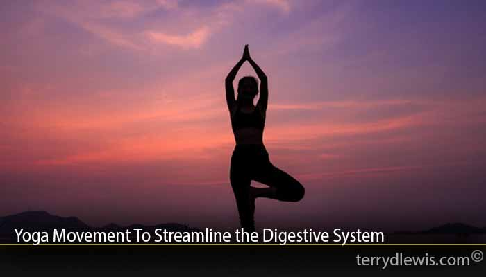 Yoga Movement To Streamline the Digestive System